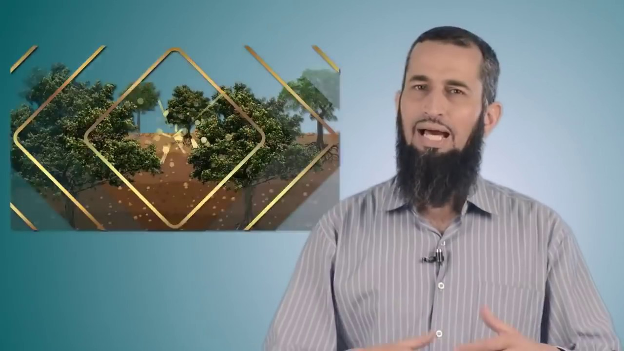 رحلة اليقين ٢: الفوائد الستة من أدلة وجود الله للموقن أصلا بوجوده